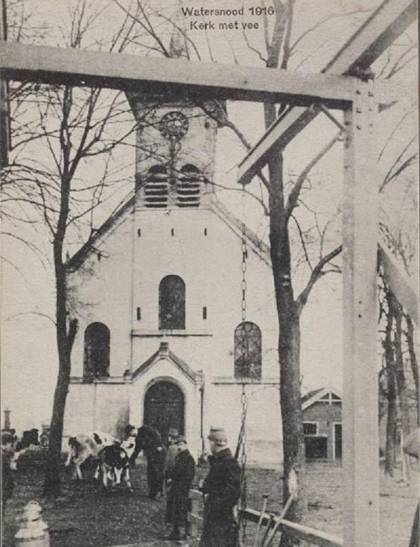 1916- De kerk van Schellingwoude met vee op het kerkerf. Op de voorgrond een ophaalbrug.