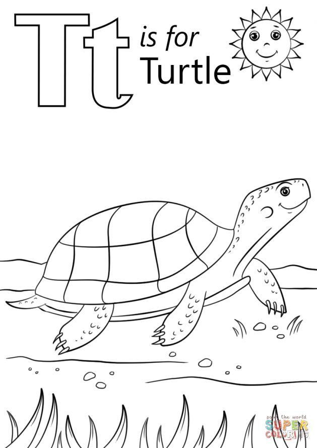 Box Turtle Coloring Page - youngandtae.com in 2020 ...