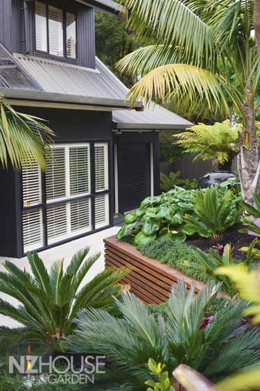 Houses & Gardens Article: Auckland tropical garden - NZ House & Garden - love the charcoal house & bright green leaves. The timber work adds warmth to the cream stone paving