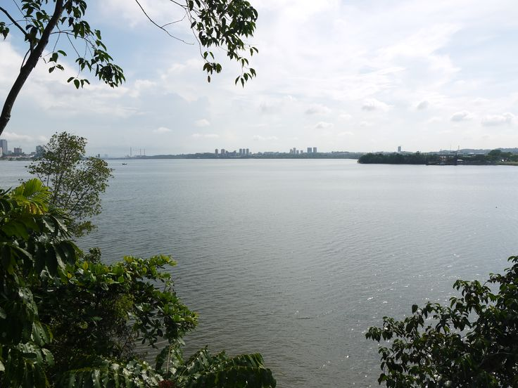 View from Sungei Buloh