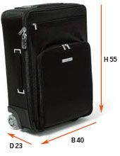 Cabin baggage - rules for size, dimension, weight and liquids - SAS