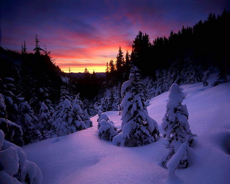 .: Winter Snow, Purple Snow Winter Night, Favorite Places, Seasons, Favorite Color, Beautiful, Winter Wonderland, Sunsets Snow, Cold Weather