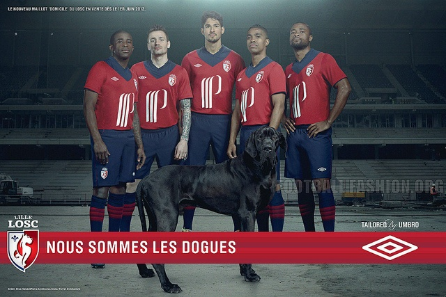Lille OSC 2012-13 Home
