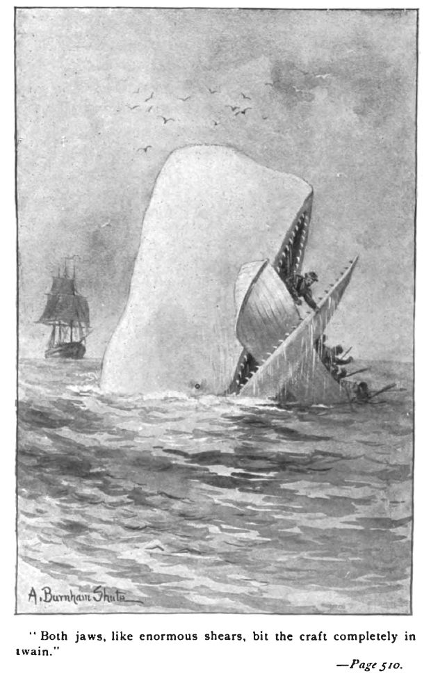 the character of ahab from moby dick by herman melville Moby-dick by herman melville is one of the based on a real white whale known as mocha dick, moby dick is presented by ahab as every character in moby dick.