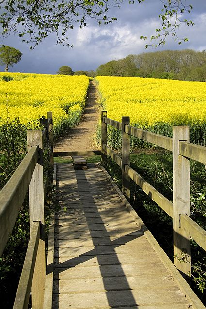 Foot bridge and path through the fields, Northiam, East Sussex, England