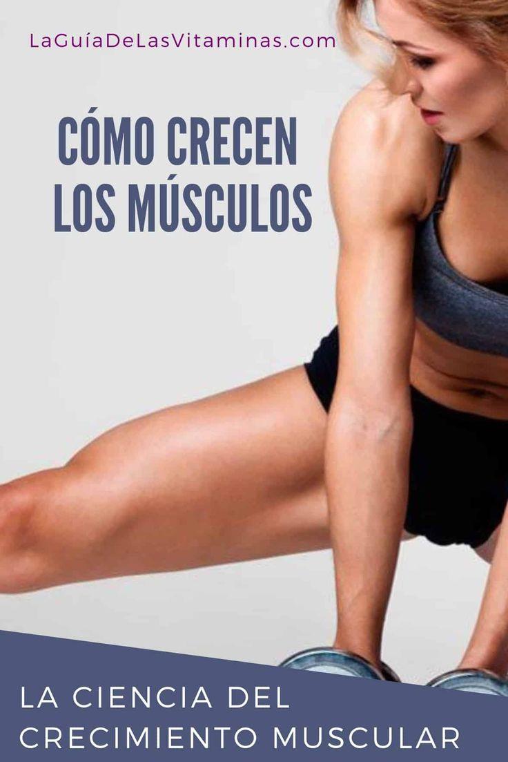 Cómo crecen los músculos: la ciencia del crecimiento muscular