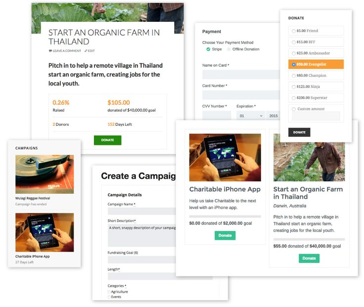 Charitable is the fundraising alternative for non-profits, and it works with any WordPress theme!