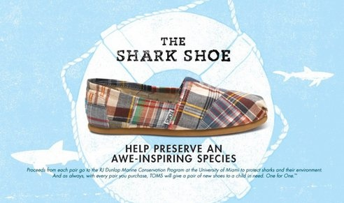 Toms Shark Shoes Help Protect Them