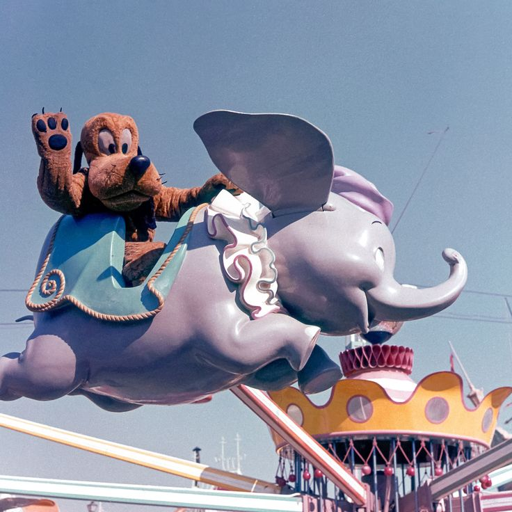 Daily Vintage Disneyland: Pluto on the Dumbo ride from the early 60's Check out our blog for more information on each picture.  http://mickeyphotosdisneyland.blogspot.com