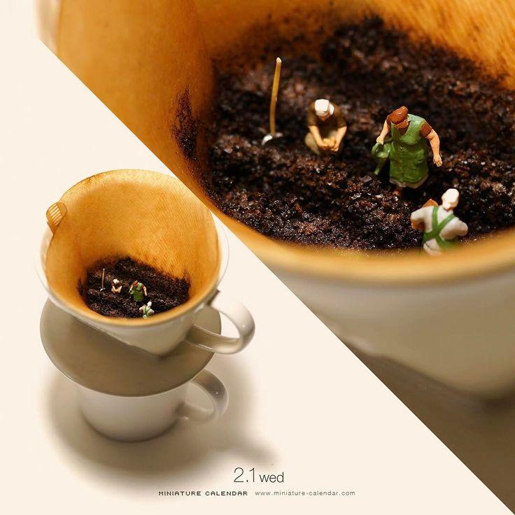 """.  2.1 wed """"Organic Coffee?""""  .  地下空洞に濁った水が溜まってます、、いい意味で!  .  #それはコーヒーです #畑   #Agriculture #field #Coffee  ."""