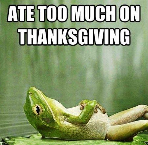 Thanksgiving Memes 2020 Funny Thanksgiving Memes Funny Thanksgiving Memes