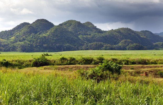 12 Interesting Facts About Jamaica