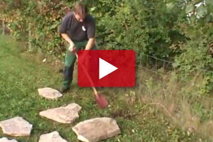 VIDEO: Här visar trädgårdsanläggaren hur man snabbt lägger en gångstig av Ölandssten.