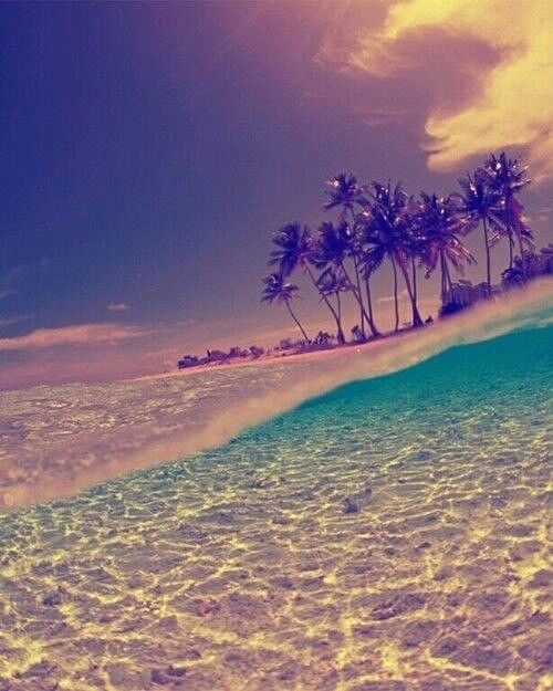 ✿⊱❥ Beach # summer # ocean # love