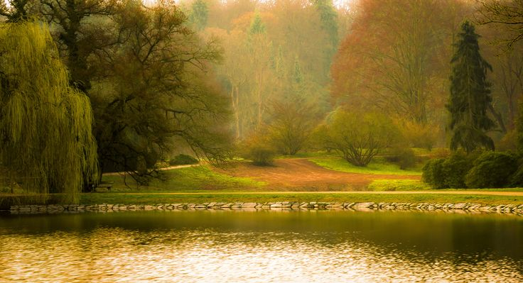 Pond in Dawn in Early Spring by Marek Boguszak on 500px