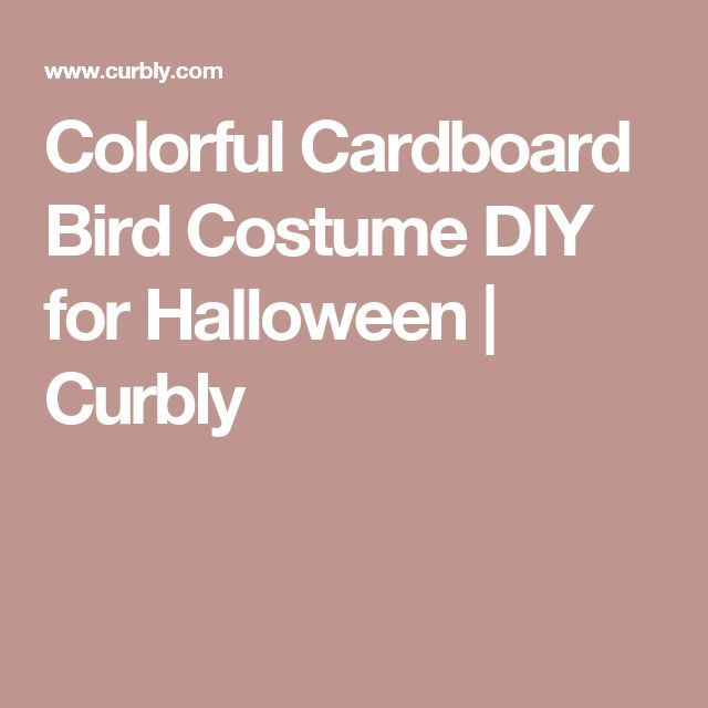 Colorful Cardboard Bird Costume DIY for Halloween | Curbly