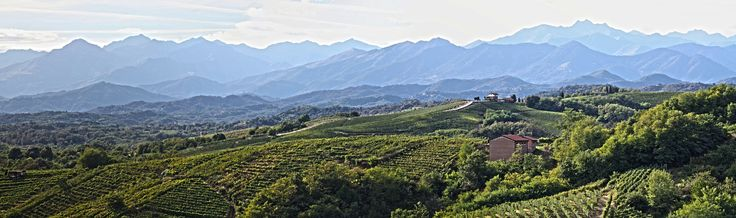 Gattinara's vineyards from the Torre delle Castelle