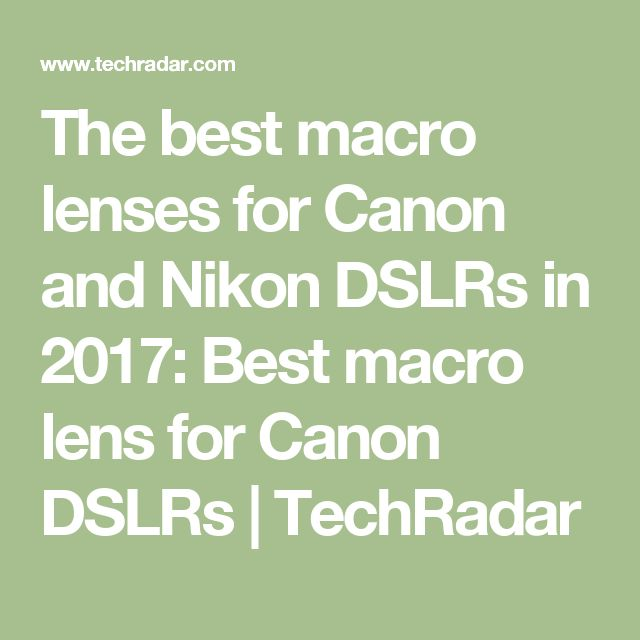 The best macro lenses for Canon and Nikon DSLRs in 2017: Best macro lens for Canon DSLRs | TechRadar