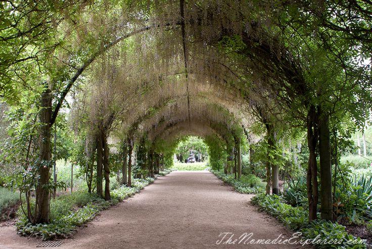 Wisteria Arch in Alowyn Gardens, Yarra Valley