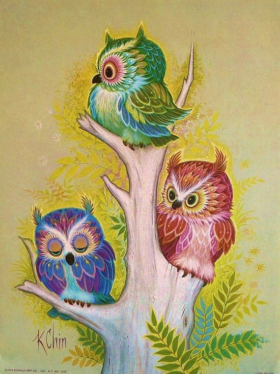 1970s Treed Baby Owls Children Print K Chin by earlybirdsale