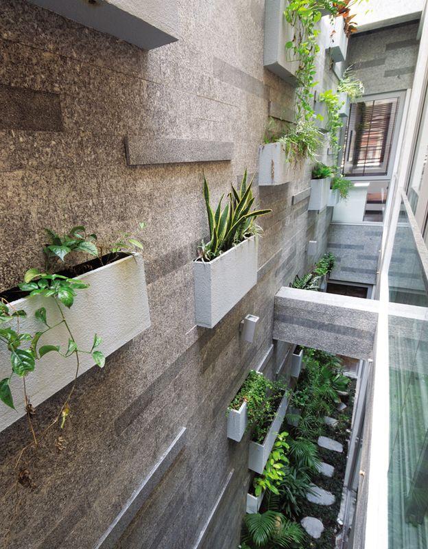 Blog Vườn đứng trong nhà phố tại Sài Gòn