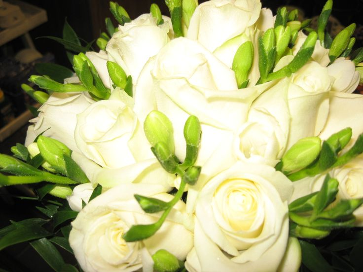 Fresh flower posy bouquet of white 'avalanche' roses and white freesia.