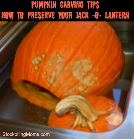 pumpkin carving tips how to preserve your jack o lantern - How To Preserve Halloween Pumpkin