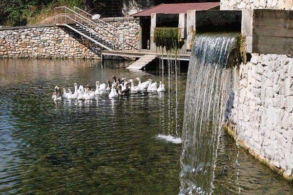 Το πανέμορφο χωριό της Ελλάδας με το ποτάμι και τα πλατάνια