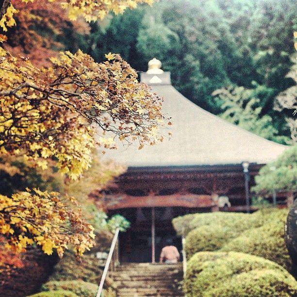 三十番 法雲寺 No30 Houunji-Temple