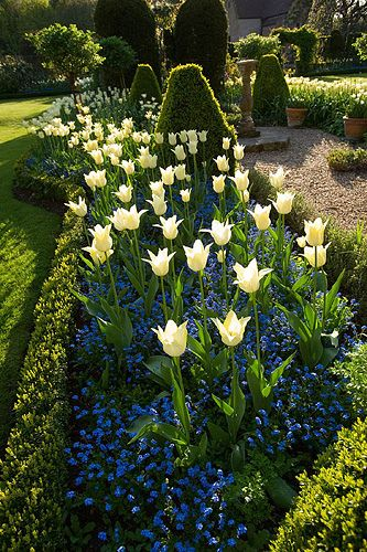 Chenies Manor Garden, Buckinghamshire, England