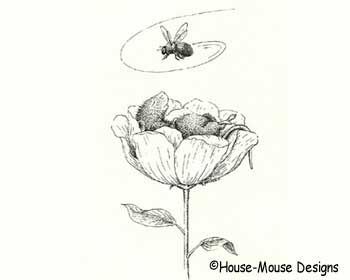 house mouse designs coloring pages - photo#22
