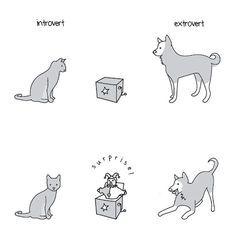 extrovertidos e introvertidos 4