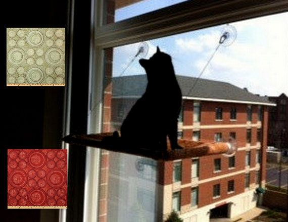 Curious Cats Window Perch