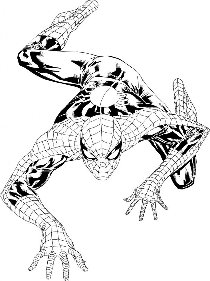 585 best coloring pages images on pinterest | spiderman coloring ... - Coloring Pages Spiderman Printable