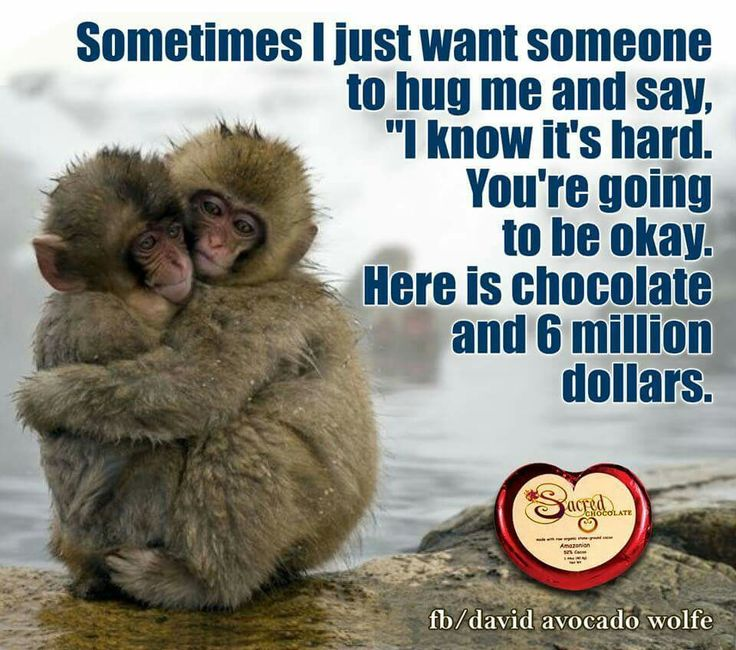 "Life Is Hard Its Harder If Youre Stupid Poster: Sometimes I Just Want Someone To Hug Me And Say, ""I Know"