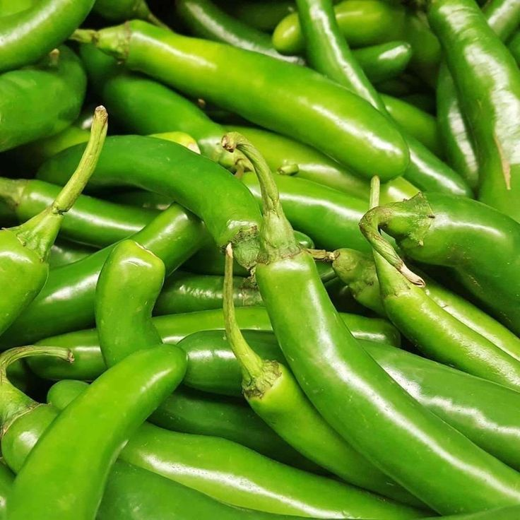 Seeds for Pepper (hot) 'Serrano' - (Capsicum annuum) – Amkha Seed