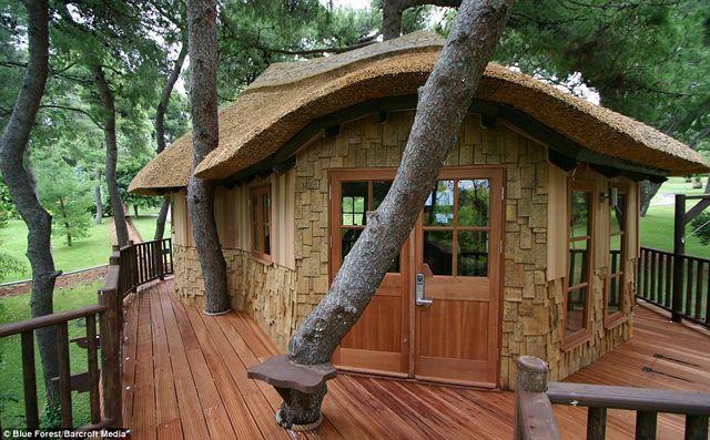 iG Colunistas – O Buteco da Net - » Empresa cria incríveis casas na árvore que custam R$ 687 mil