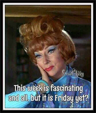 Endora - Is it Friday yet?