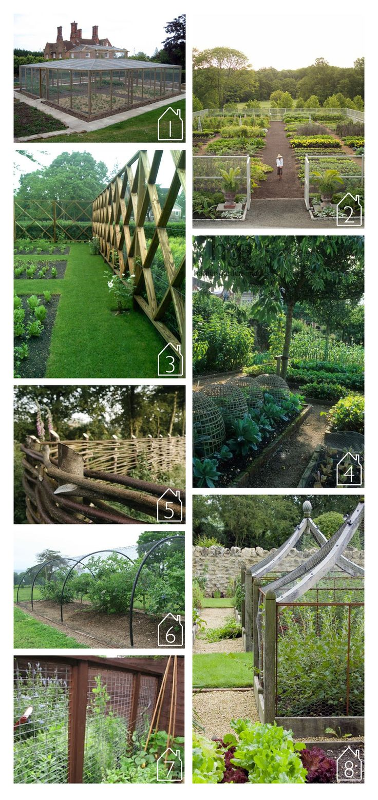 98 best fence images on Pinterest Gardening Garden ideas and