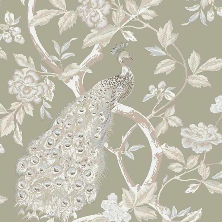 The Wallpaper Company 56 sq. ft. Ivory and Pewter Peacocks and Vines Wallpaper-WC1281859 - The Home Depot