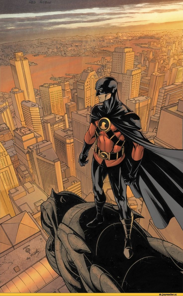 Red Robin,Красный Робин, Тим Дрейк,Bat Family,DC Comics,DC Universe,фэндомы