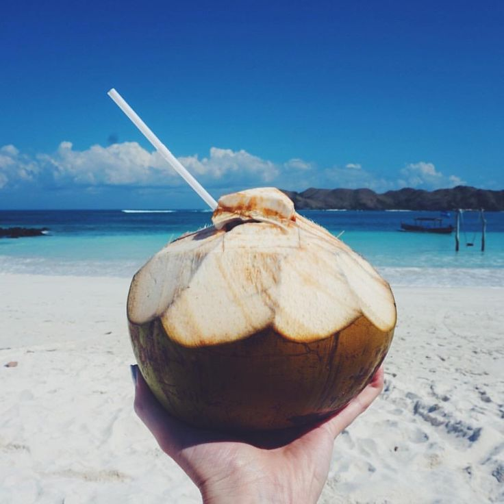 """Living that coconut life at Tanjung Aan Beach in Lombok, Indonesia - 107 Likes, 5 Comments - Sarah   Ranga Adventures  (@rangaadventures) on Instagram: """"fresh coconuts on the beach are my new favourite thing   tanjung aan beach, south lombok…"""""""