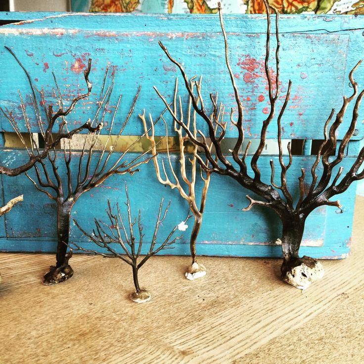 Koraller fra Sydafrika - dekorative - ligner og føles som træer pr stk 50 kr