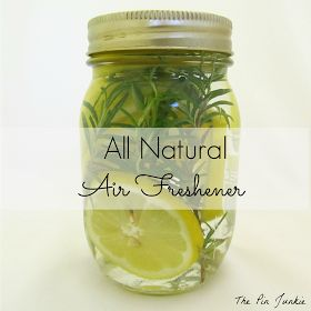 The Pin Junkie: All Natural Air Freshener