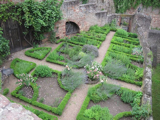 herb-garden-78.jpg 650 × 488 pixlar