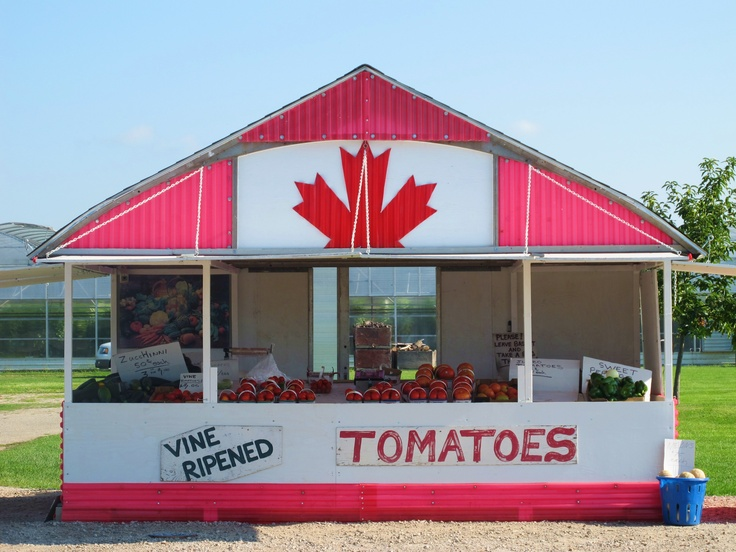 Love visiting my family in Leamington Ontario, where all the best tomatoes come from!