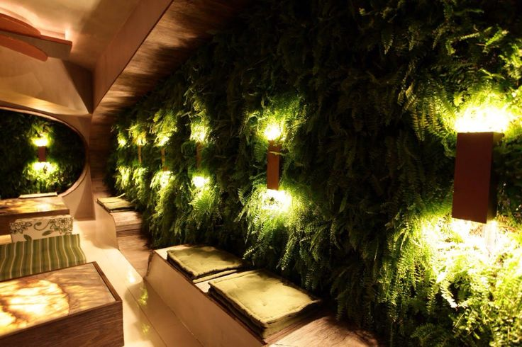 Living Wall w/ tremendous lighting