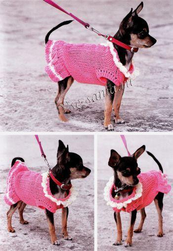 Мода для собак, фото