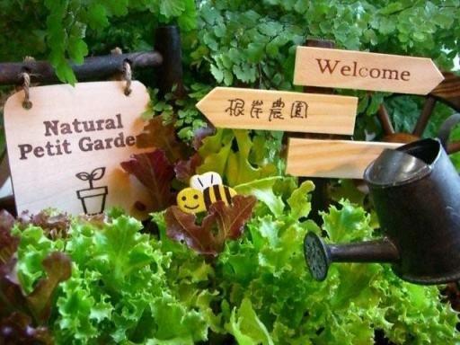 家庭菜園 - Google 検索