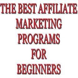 What Is The Best Affiliate Marketing Program For Beginners ...